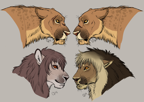 Achidar Lions Revamp by CitruShark