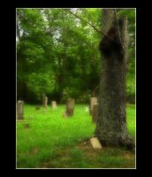 The Cemetery by DG-Photo