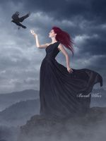 The Sound of Her Wings by BurakUlker