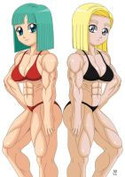 Commission: Bulma and Android 18 by crosscutter
