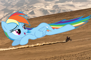 Rainbow In the Desert by SomeRandomMinion