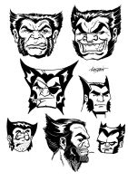 Wolverine Head Sketches by LostonWallace