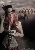 Welcome to the Circus by Vampiric-Time-Lord