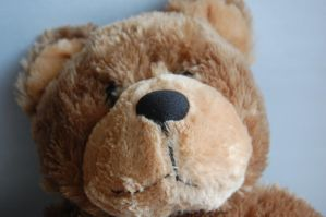 Stock 413 - Teddy Bear by pink-stock