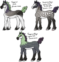 Personal Imperial Foals by gyngercookie