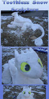 .:Toothless the snow fury:. by Patsuko