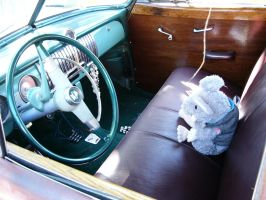 Wood You Like To See The Interior? by RoadTripDog
