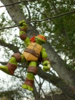 just, hanging around dude! by TMNTFAN85