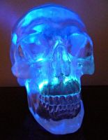 Glowing Crystal Skull by skullsdirect