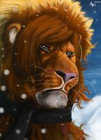 Winter Portrait by Lion-Neverkilled