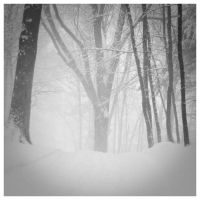White Out by DennisChunga
