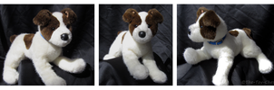 Douglas Medium Floppy Dogs - Kip Jack Russell by The-Toy-Chest