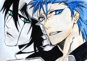 Ulquiorra and Grimmjow by thewomaninred