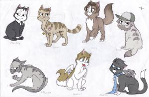 supernatural cats by flying-shark
