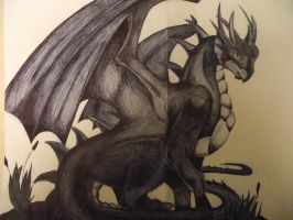 My Pen Dragon I Drew :3 by music-is-my-life13