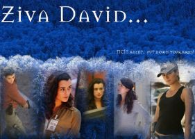 Ziva David wallpaper by TaliaSolo