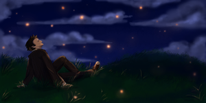 The Doctor and the Fireflies by capefoxalix