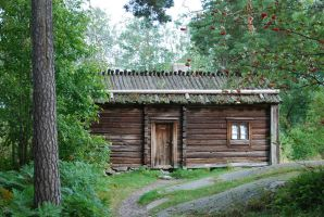 Old finnish house 2 by hoshitsu