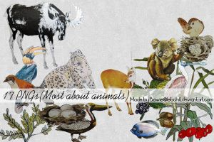 17 animal and other stuff PNGs by letschill