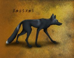 Kestrel - The Cloudwood Fox character by WolfScribe