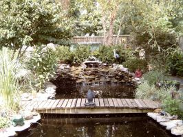Pond by kbstock