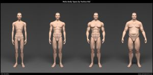 Male Body Types by YeshuaNel