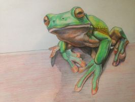 Frog Unfinished Study by noahstormcrow