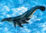 Sky Whale Concept by Simkaye