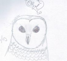 Drawing: Owl by Once-in-a-Bluemoon96