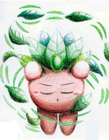 Traditional Practice: Split Comp. with Leaf Kirby by The-Super-Brawl-Girl