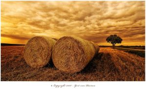 The Last Bales by cresk
