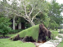 Hurricane Ike: The Cleanup 9 by theoracleofdreams