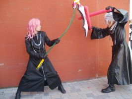 Marluxia and Xemnas Fight by LittleRikku91