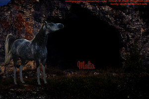 MALTA: Request by MiddysGraphics