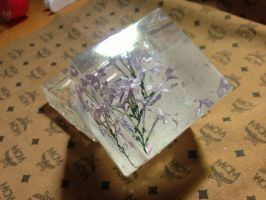 flowers+Epoxy resin=Paperweights2 by Queen-Of-Summer