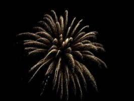 Fireworks. by Stefano2505
