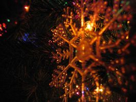 030.  Tannenbaum by mynti-stock