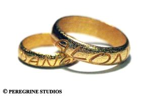 It's Dangerous To Go Alone - Valentine's Rings by PeregrineStudios