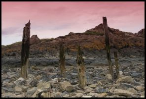 Lindisfarne Stilts by dxd