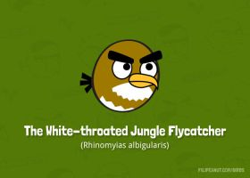 The White-throated Jungle Flycatcher by Filipeanuts
