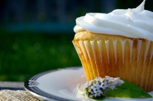 White Cupcake by chiziwhiteafrican