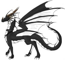 Black dragoness by Lucie-P