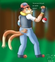 Into the Fight, Buizel by Banana-of-Doom2000
