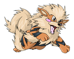 Arcanine by shorty-antics-27