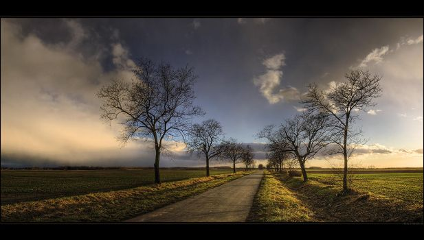 Take the long road and walk it by realityDream