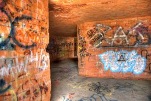 Hdr Forts 5 by coog7444