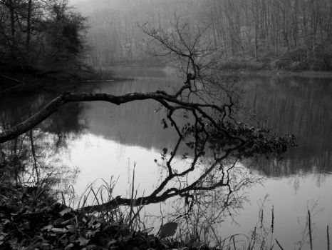 Blackwater Park by theWicked