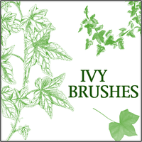 Ivy Brushes 2 by butnotquite
