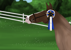 TGT 2015 - 2nd Training Cross-Country by Jessa-bee