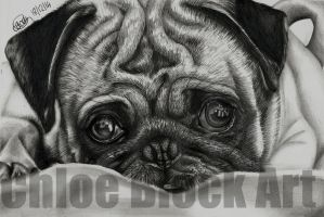 PUGGY LOVE by ItsCloctorArt
